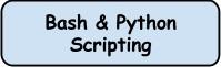 bash & python